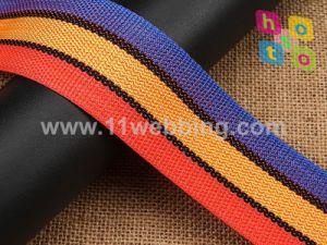High Quality Different Color PP Polypropylene Webbing pictures & photos