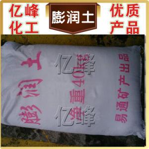 Pharmaceutical Grade Calcium/Sodium Bentonite pictures & photos