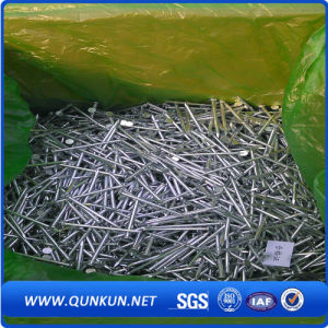 Iron Wire Electric Galvanized Roofing Nails pictures & photos