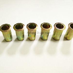 Carbon Steel Flange Head Rivet Nut pictures & photos