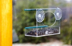 Wholesale Hanging Fashion Clear Acrylic Bird Feeder pictures & photos