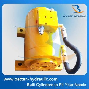 Popular Hydraulic Rotary Actuator for Industrial pictures & photos