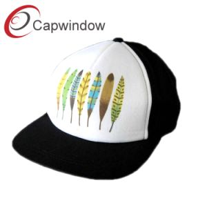 Hot Selling Literature Snap Back Hat pictures & photos