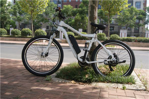 Strong Aluminum Alloy 48V 500W Electric Bicycle /City Ebike for Sale pictures & photos