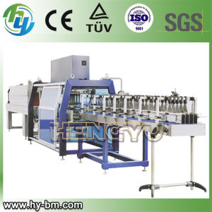 Linear Type PE Film Wrapping Machine pictures & photos