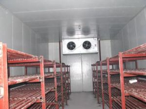 Cold Room Project Chiller 20 Ton Vegetable Laiao) pictures & photos