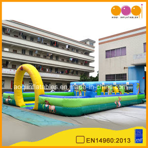 Hot Sale Inflatable Pony Hop Race Inflatable Horse Racing Games (AQ1656-2) pictures & photos
