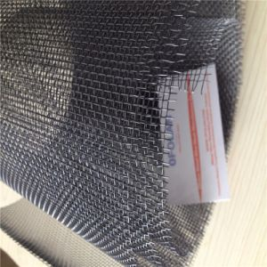 Gr1 Gr2 Titanium Wire Mesh Screen Cloth Netting for Filtration pictures & photos