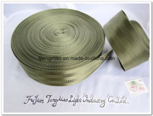 Nylon Webbing for Safety Belt pictures & photos