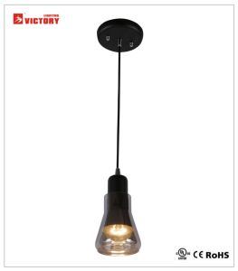 Victory Popular Modern Simple LED Pendant Light Chandelier Lamp pictures & photos