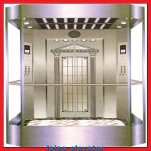 Residential Panoramic Glass Elevator pictures & photos