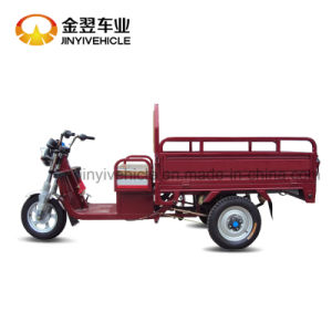 Top Speed 40km/H 50km Mileage Electric Cargo Tricycle with Big Power pictures & photos
