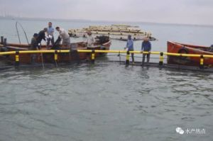Aquaculture Fish Farming Cage with PE Net pictures & photos