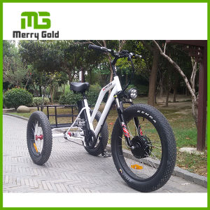 500W Three-Wheel Fat Tire Ebike Electric Tricycle for Sale pictures & photos