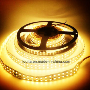 Double Row 2835 240LED/M LED Flexible Strip pictures & photos