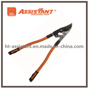 Ratcheting Orchard Hand Shears Horticultural Vine Tree Branch Bypass Loppers pictures & photos