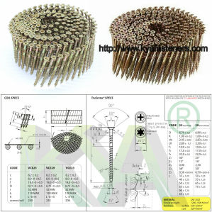 15 Deg Wire Nail Collated Screw pictures & photos