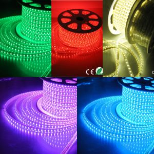 Decorative Red Geen Warm White LED Strip Light Flexible Strip pictures & photos