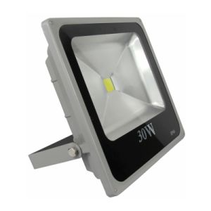 High Quality Hot Sale 30W Driverless LED Flood Light pictures & photos