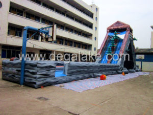 164feet/50m Giant Inflatable Hippo Water Slide for Adult pictures & photos