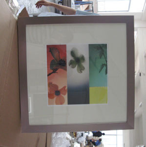 Picture Frame (AA2113)