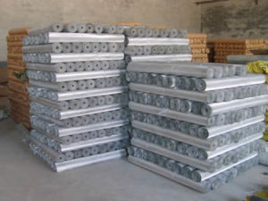 Stainless Steel Wire Mesh with Competitive Price pictures & photos