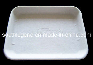 Disposable Tray (SL-D-4012)