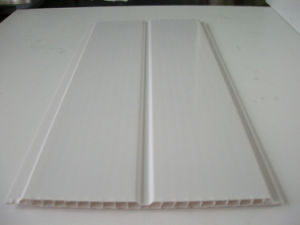 PVC Panel pictures & photos