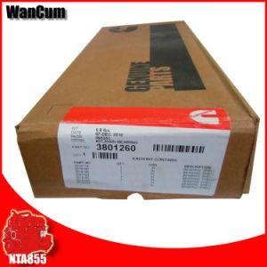 Nta855 Diesel Parts 3801260 Cummins Parts Main Bearing pictures & photos