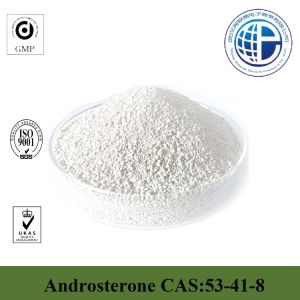 Male Steriod Powder CAS: 53-41-8 Androsterone pictures & photos