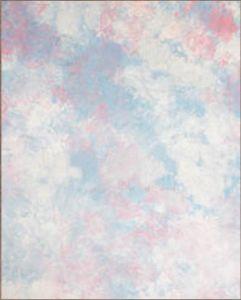 Muslin 10x20FT 10x10FT Cloud-Dyed Photo Background (RMYR-016)