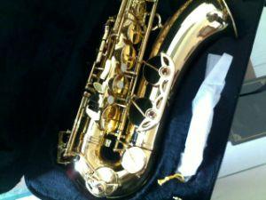 Tenor Saxophone (HSL-2003)