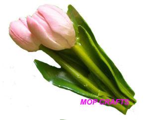 Tulip Flower Holland Dutch Souvenirs Gifts of Fridge Magnet pictures & photos