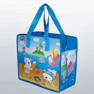 Gift Bag (CXNWB-012)