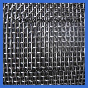 Galvanized Steel Crimped Wire Mesh pictures & photos