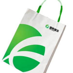 Custom Art Paper Bag for Gift with Twisted Handle (KX-P005)