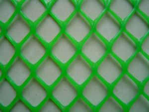 Plastic Netting Manufacturer Hot Sale! pictures & photos