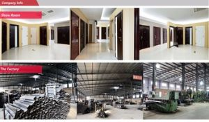 Yongkang China High Quality Safety Metal Door (SC-110) pictures & photos
