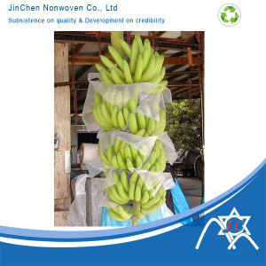 UV Treated Non-Woven Bag for Fruit pictures & photos