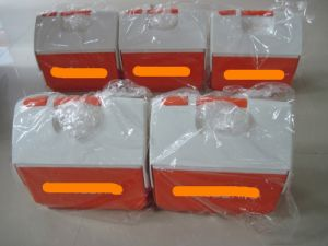 3-4L Small Cooler Box, Ice Box, Cooler Box pictures & photos