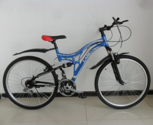 New Product Suspension Mountain Bicycle (FP-MTB100) pictures & photos