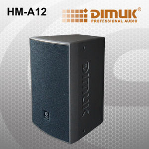 Powerful 12 Inch Professional Speaker (HM-A12)