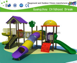 Small Playground Outdoor Playground with GS & TUV Certs (H13-09002) pictures & photos