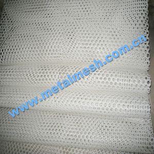 Plastic Net Manufacturer Hot Sales! pictures & photos