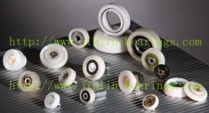 Jinlin Plastic Nylon Special Bearing pictures & photos