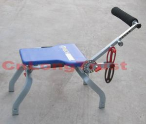 Transform 12 Fitness Equipment (LT-AB022)