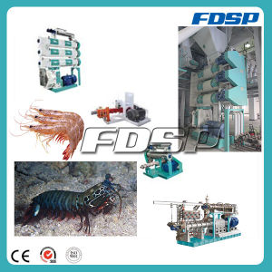 Ce Approved Fish Feed Production Line pictures & photos