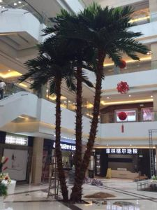 Artificial Coco Palm Tree Outdoor or Indoor Use Gu-Bj-769-Coco-Palm-Mix pictures & photos