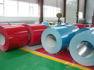 Prepainted Galvanized Steel Coils PPGI and Gi From Shandong pictures & photos