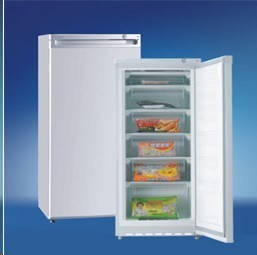 BD-152 Mini Upright Refrigerator Fridge